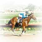 betting online horse racing